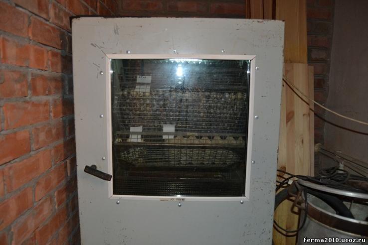 Илб 05 Инкубатор инструкция